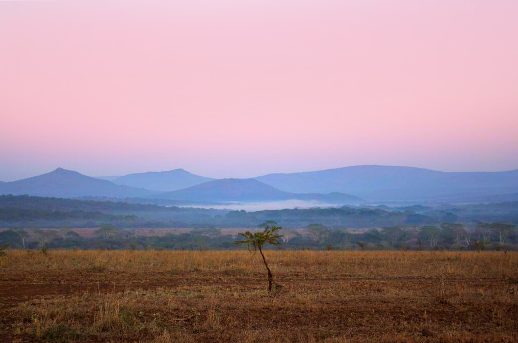 A Date with Rhino River Lodge's Wilderness