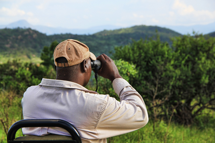 First time safari tips from rangers in the know